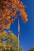American Flag Colors Posters - Autumn Flag Poster by Douglas Barnett