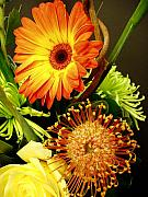 Still Life Photo Originals - Autumn Flowers by Nancy Mueller