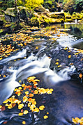 Waterfall Photos - Autumn by George Messaritakis