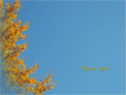 Tree Leaf Posters - Autumn Ginkgo Tree Poster by Eena Bo