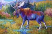 Moose Paintings - Autumn Glimpse by Marion Rose