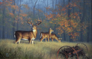Wagon Wheels Originals - Autumn Glory by John Cogan
