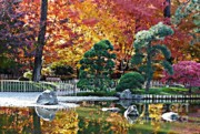 Reflection Of Rocks In Water Prints - Autumn Glow in Manito Park Print by Carol Groenen