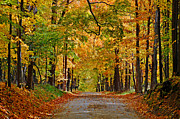 Metamora Metal Prints - Autumn Gold Metal Print by Rodney Campbell