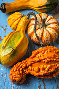 Yellows Prints - Autumn gourds still life Print by Garry Gay
