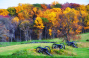 Cannons Metal Prints - Autumn Guns Metal Print by Bill Cannon