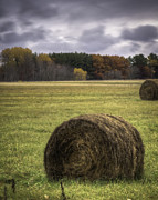 Bales Posters - Autumn Harvest 1 Poster by Thomas Young