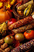 Basket Photo Posters - Autumn harvest  Poster by Garry Gay