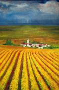 Golden Sunlight Paintings - Autumn Harvest by Michael Durst