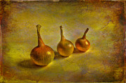 Onion Prints - Autumn harvest Print by Veikko Suikkanen