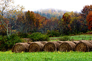 Autumn Scene Photos - Autumn Hay Bales by Thomas R Fletcher