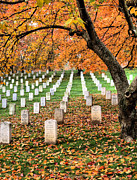 Arlington Photos - Autumn Heroes by JC Findley