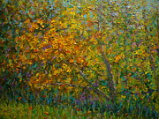 Terry Perham Art - Autumn Impasto by Terry Perham