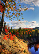 Huntsville Prints - Autumn in Arrowhead Provincial Park Print by Oleksiy Maksymenko