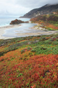 Big Sur Photos - Autumn in Big sur California by Pierre Leclerc