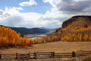 Colorado Stream Posters - Autumn in Colorado Poster by Gayle Johnson