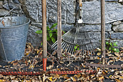 Gardening Tools Posters - Autumn in the Garden Poster by Joana Kruse