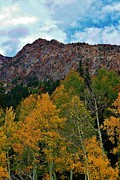 Sceneci Photography Framed Prints - Autumn in the Mountains Framed Print by Bruce Bley