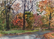 Fall Color Painting Posters - Autumn in the Park Poster by Donald Maier