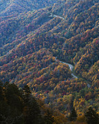 Fall Road Photos - Autumn in the Smoky Mountains by Dennis Hedberg