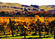 California Vineyard Photo Prints - Autumn in the Valley 2 - Digital Painting Print by Carol Groenen