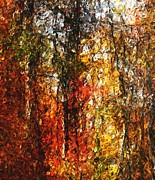 Photo-manipulation Digital Art Framed Prints - Autumn in the Woods Framed Print by David Lane
