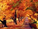 Autumn In Vermont Print by David Lloyd Glover