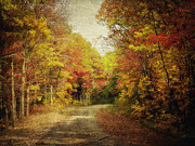 Autumn Prints Posters - Autumn In Virginia Poster by Kathy Jennings