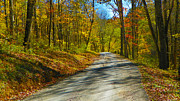 West Virginia Posters - Autumn in WV Poster by Road  Mosey