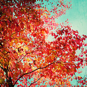 Autumn Landscape Prints - Autumn Print by Kim Fearheiley