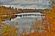 Golden Leaves.beauty Prints - Autumn Lake Print by Gert Lavsen