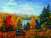 Abandoned Houses Painting Posters - Autumn Landscape Quebec Red Maples And Blue Spruce Trees Poster by Carole Spandau