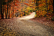 Fall Photo Metal Prints - Autumn landscape with a path Metal Print by Elena Elisseeva