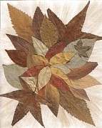 Saywood Samen - Autumn Leaves Collage