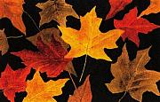 Autumn Leaves Painting Acrylic Prints - Autumn Leaves Acrylic Print by Michael Vigliotti