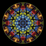Kaleidoscope Photos - Autumn Leaves Reflection Mandala by Janeen Wassink Searles