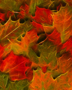 Warm Digital Art - Autumn Leaves - Version 2 by Wingsdomain Art and Photography