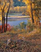 Idaho Prints - Autumn Print by Leland Howard