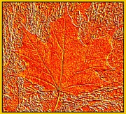 Maple Leaf Digital Art - Autumn Maple Leaf by Will Borden