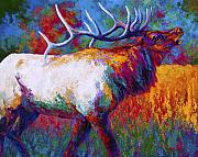 Elk Paintings - Autumn by Marion Rose