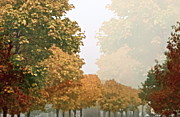 Brown Leaves Prints - Autumn Mist Print by Gwyn Newcombe
