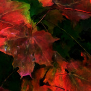 Fall Colors Autumn Colors Mixed Media Posters - Autumn Moods 5 Poster by Carol Cavalaris