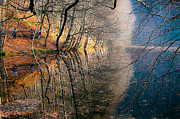 Lagoon Prints - Autumn Print by Okan YILMAZ