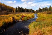 Riding Photos - Autumn on Jackfish Creek by Larry Ricker