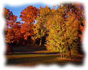 Reds Of Autumn Metal Prints - Autumn on Swansons Path Metal Print by Liz Evensen