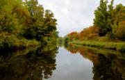 Eire Framed Prints - Autumn on the Erie Canal Framed Print by David Lee Thompson