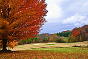 Susan Leggett Photo Prints - Autumn on the Golf Course Print by Susan Leggett