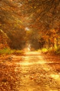 Autumn Landscape Mixed Media Posters - Autumn Paradisium Poster by Zeana Romanovna