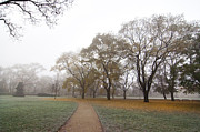 Contemplative Metal Prints - Autumn Park Metal Print by Michal Boubin
