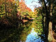 Autumn Park With Bridge Print by Susan Savad